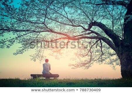 подростку сидят дерево девушки портрет женщины Сток-фото © photography33