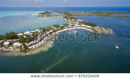 Starfish Point Cayman Kai stock photo © mosnell