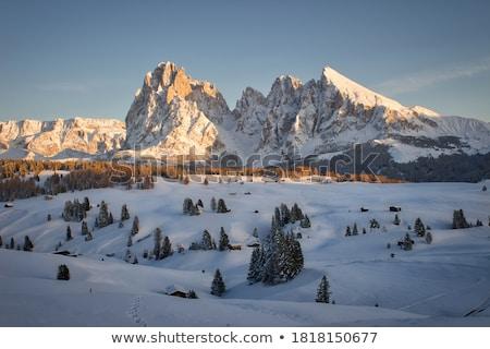 view from Sassolungo Stock photo © Antonio-S