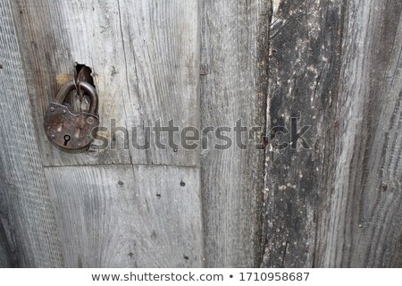 planks with rusty nails in abandoned interior Stock photo © sirylok