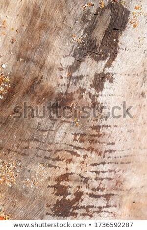 suprafata · fisuri · multe · copac · roşu - imagine de stoc © pixelsnap