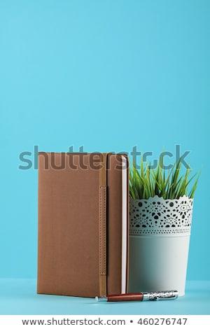 personnelles · organisateur · planificateur · stylo · blanche · luxe - photo stock © shutswis