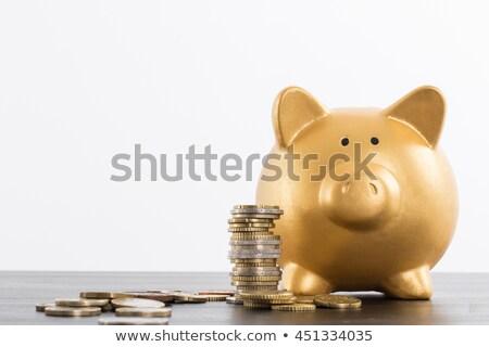 Arany persely dollár bank disznó pénz Stock fotó © pterwort