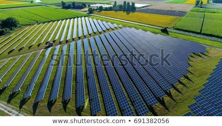 Domaine photovoltaïque autre herbe Photo stock © tepic