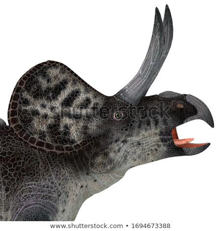 Zuniceratops Dinosaur stock photo © AlienCat