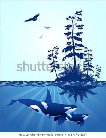 abstract pacific northwest ocean scene stock photo © carpathianprince