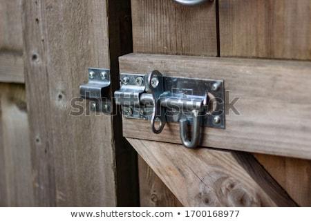 ворот обрабатывать кольца древесины Сток-фото © trgowanlock