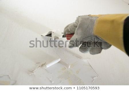Dirty scraper on white Stock photo © ajt