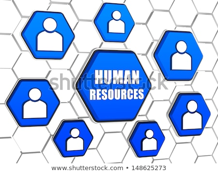 human resource and person signs in hexagons Stock photo © marinini
