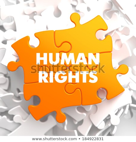 Human Rights on Orange Puzzle. Stock photo © tashatuvango