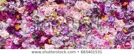 карт цветочный цветы искусственный подарок Сток-фото © natika