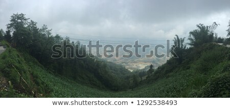 wonderful vietnam country mountain cloudy green valley stock photo © xuanhuongho