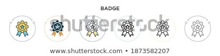 two blanks medallions  Stock photo © OleksandrO