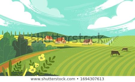 Ferme champs arbres horizontal image maison Photo stock © Koufax73