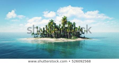 Paradis île horizons palmiers bateaux vecteur Photo stock © -Baks-