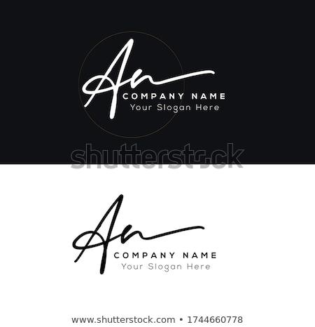 N letter logo Stock photo © Ggs