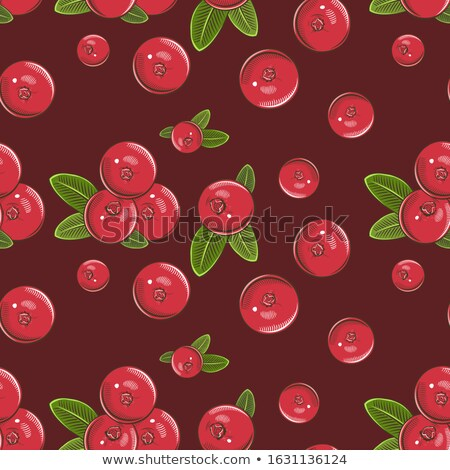 Cranberry in vintage style. Colored vector illustration Stock photo © ConceptCafe