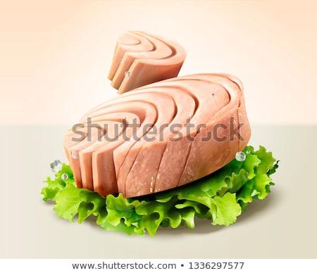 Ton balığı örnek deniz çizim gölet biyoloji Stok fotoğraf © bluering