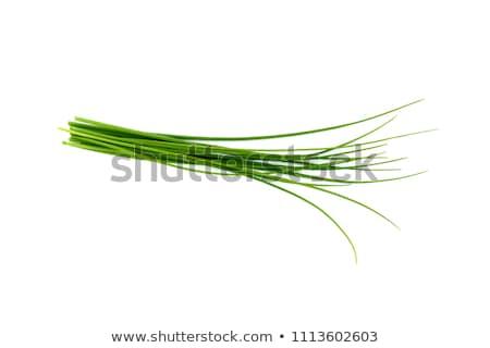Stockfoto: Vers · bieslook · groene · witte · kom