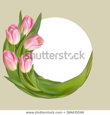 voorjaar · cirkel · frame · vorm · kind · communie - stockfoto © beholdereye