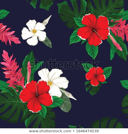 Seamless background design with red hibicus and green leaves Stock photo © bluering