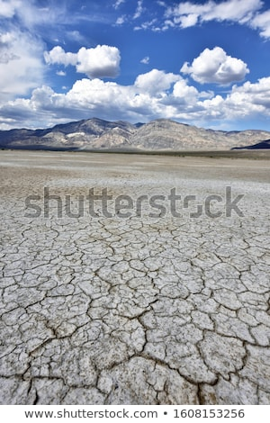 yol · manzara · ölüm · vadi · park · Kaliforniya - stok fotoğraf © meinzahn