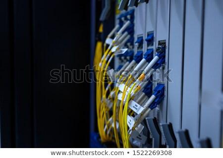 Rete switch isolato bianco carta Foto d'archivio © digitalr