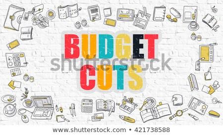 Budget Cuts Concept. Multicolor on White Brickwall. Stock photo © tashatuvango