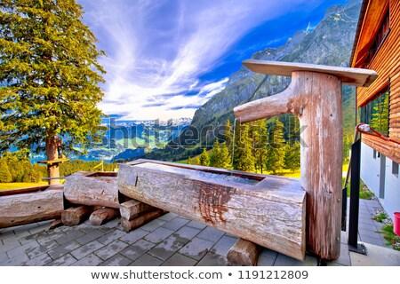 Houten fontein beneden berg alpine Stockfoto © xbrchx