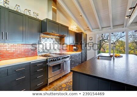 Açmak mutfak dizayn tavan özellikleri Stok fotoğraf © iriana88w