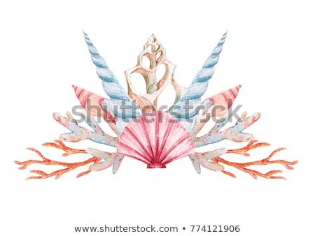 красивой русалка коралловый риф иллюстрация девушки рыбы Сток-фото © colematt