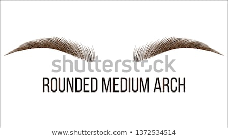 Сток-фото: Rounded Medium Arch Vector Hand Drawn Brows Shape