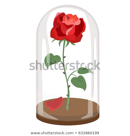 vector red rose glass flask stock photo © vetrakori