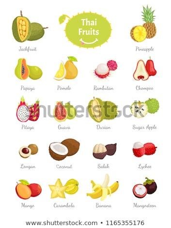 Tajska owoce zestaw bujny żywności wektora Zdjęcia stock © robuart