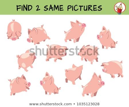find two same pig characters coloring book Stock photo © izakowski