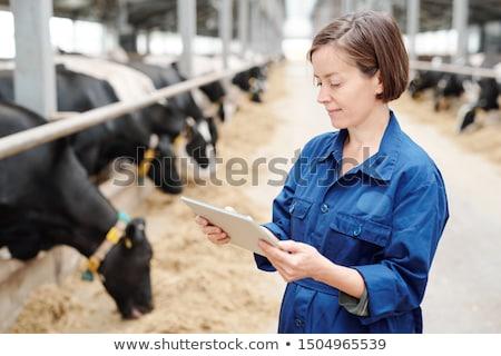 Komoly fiatal női munkás állat farm Stock fotó © pressmaster