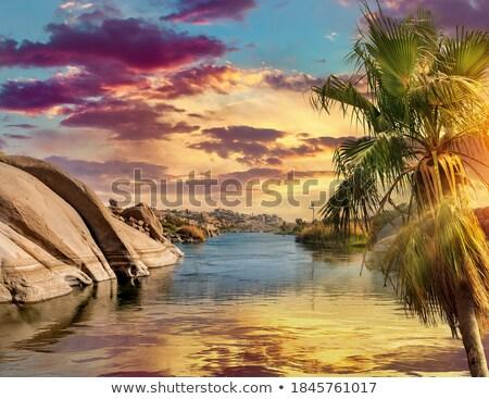 Coast in Aswan Stock photo © Givaga