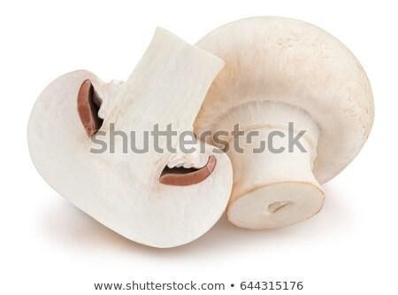 新鮮な · キャップ · ヤマドリタケ属の食菌 · 孤立した · 白 · 自然 - ストックフォト © boroda