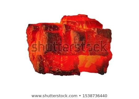 forró · szén · közelkép · fotó · fa · piros - stock fotó © rosspetukhov