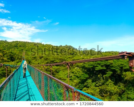 canopy bridge Stock photo © tiero