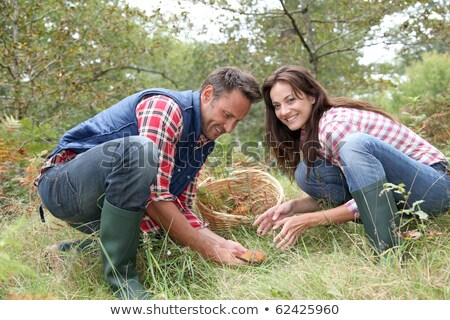 Stock photo: Couple picking mushrooms in a forest