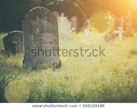 Grobu światło słoneczne starych krzyż cmentarz Zdjęcia stock © stevemc
