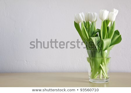 rot · weiß · Vase · Blumen · Blatt · Geburtstag - stock foto © compuinfoto