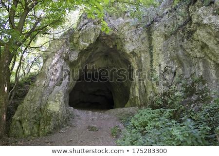 ciemne · jaskini · wejście · trawy · lasu · zielone - zdjęcia stock © vavlt
