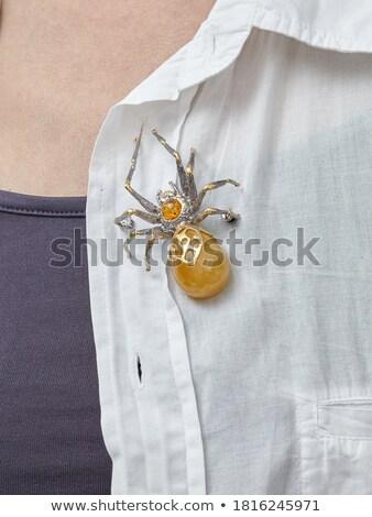 Bernstein Spinne isoliert weiß Meer Metall Stock foto © gavran333