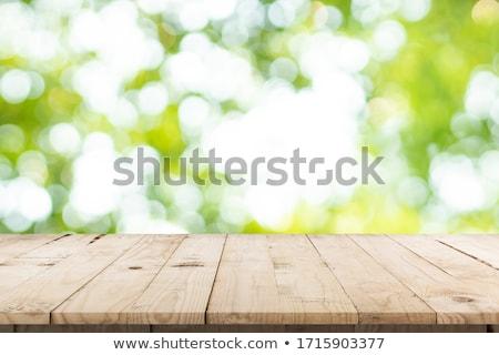 Tavasz elmosódott fények fából készült palánk panel Stock fotó © fotoaloja