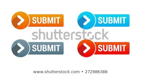 Submit button Stock photo © burakowski
