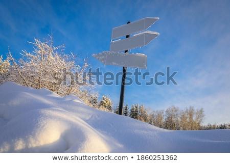 воды · весны · природы · снега · зима · городского - Сток-фото © chrisbradshaw