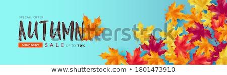 Saison d'automne automne paysage coloré forêt bord Photo stock © photosebia
