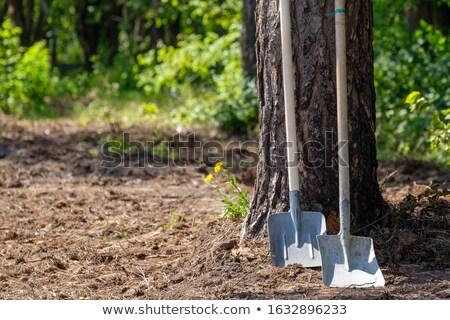 2 ビジネス 木材 建設 ビジネスマン 業界 ストックフォト © aliaksandra